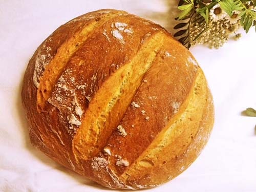 Ovsen kruh