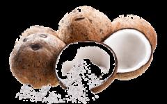 Eko kokosova moka, brez glutena, 250 g