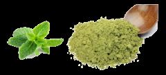 Premium stevia v prahu, 100 %