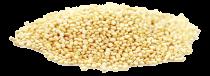 Eko bela kvinoja