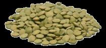 Eko zelena leča 500 g